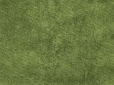 Maywood Studios Shadowplay Basics Fabric - Green