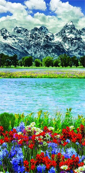 Hoffman Digital Shannon Cuddle Print Panel: Mountain Majesties Spring Fabric Panel