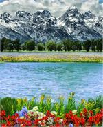 Hoffman Digital Print Panel: Mountain Majesties Spring Fabric Panel